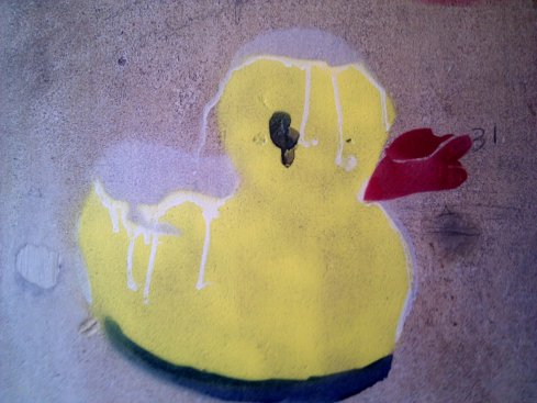 Graffiti rubber ducky on concrete wall near university of illinois quad in champaign Illinois
