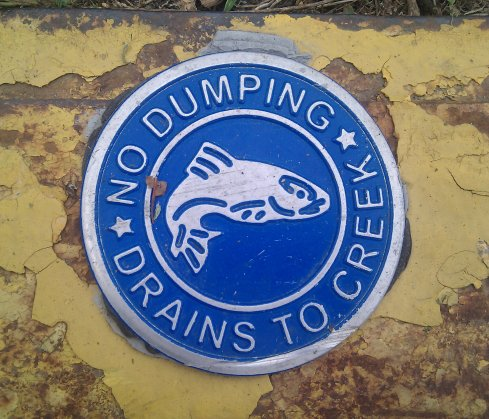 No dumping with metallic fish, blue background and yellow curb grass showing