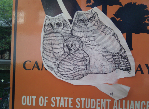 A drawing of Owls is pasted on to a traffic sign.